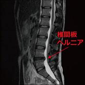 radiology06